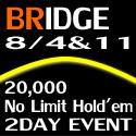 banner-125×125-bridge08