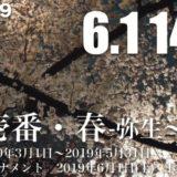 明日(6/1)は14:00から麻布壱番・春、権利者一覧